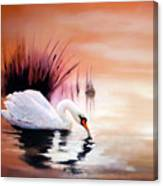 Sunrise On Swan Lake Canvas Print