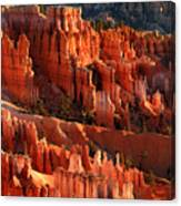 Sunrise On The Hoodoos Of Bryce Canyon National Park Canvas Print