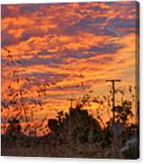 Sunrise Over The Wheat Fields Canvas Print