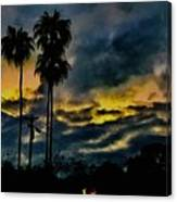 Sunrise Palms Canvas Print