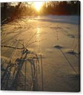 Sunrise Reflecting Off Mississippi River Ice Canvas Print