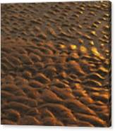 Sunrise Sand Patterns At Hunting Island Canvas Print