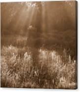 Sunrise Sepia Canvas Print