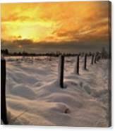 Sunrise Snow Fields Canvas Print