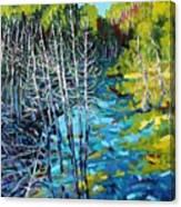 Sunrise Swamp Canvas Print