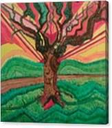 Sunrise Treeair Canvas Print