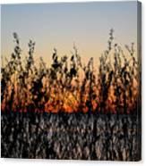 Sunrise2 Canvas Print