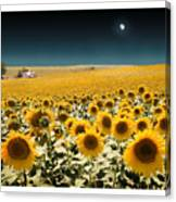 Suns And A Moon Canvas Print
