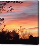Sunset 31 Canvas Print
