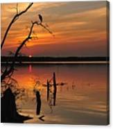 Sunset And Heron Canvas Print