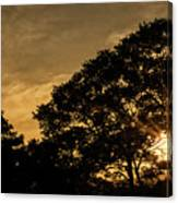 Sunset And Trees - San Salvador Canvas Print