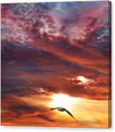 Sunset At Arverne Canvas Print