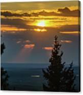 Sunset At Cypress #3 Canvas Print