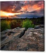 Sunset At Fontainebleau Canvas Print