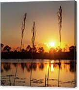 Sunset At Gator Hole 3 Canvas Print