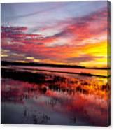Sunset At Myakka River State Park, Florida Canvas Print