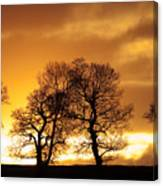 Sunset At Redhill Canvas Print