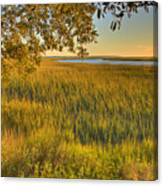 Sunset At The Marsh Canvas Print