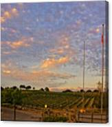 Sunset At Vineyard Canvas Print