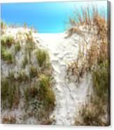 Sunset Beach Dune Path Canvas Print