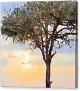Sunset Behind Acacia Tree Digital Watercolor Canvas Print