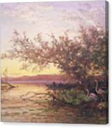Sunset, Camargue Canvas Print
