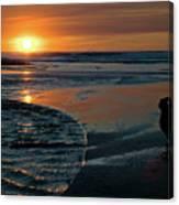 Sunset Capture Canvas Print