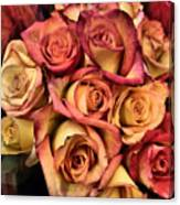 Sunset Colored Roses Canvas Print