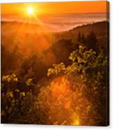 Sunset Fog Over The Pacific #2 Canvas Print
