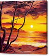 Sunset From A Carmel Cypress Tree  Canvas Print