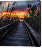 Sunset In Meaher Park #102 Canvas Print