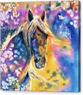 Sunset Mustang Canvas Print