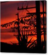 Sunset On Socal Suburb Canvas Print