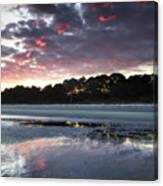 Sunset On South Forest Canvas Print