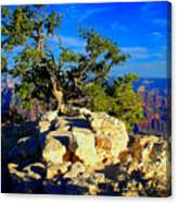Sunset On The North Rim - Grand Canyon Canvas Print