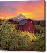 Sunset Over Mt Hood And Red Barn Canvas Print