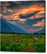 Sunset Over The Pasture Canvas Print