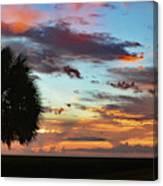 Sunset Palm Florida Canvas Print