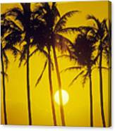 Sunset Palms And Family Canvas Print