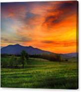 Sunset Pasture Canvas Print