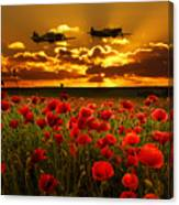 Sunset Poppies Fighter Command Canvas Print