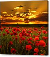 Sunset Poppies The Bbmf Canvas Print