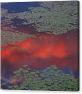 Sunset Reflection In Pond Canvas Print