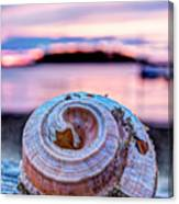 Sunset Shell Canvas Print
