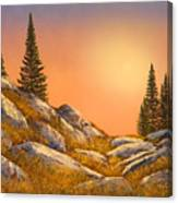 Sunset Spruces Canvas Print