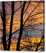 Sunset Through The Tree Silhouette Canvas Print