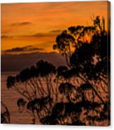 Sunset /torrey Pines Image 2 Canvas Print