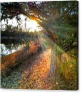 Sunset Trails  Canvas Print