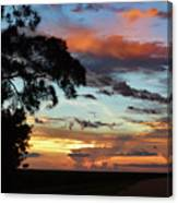 Sunset Tree Florida Canvas Print