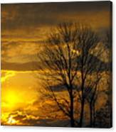 Sunset With Backlit Trees Canvas Print